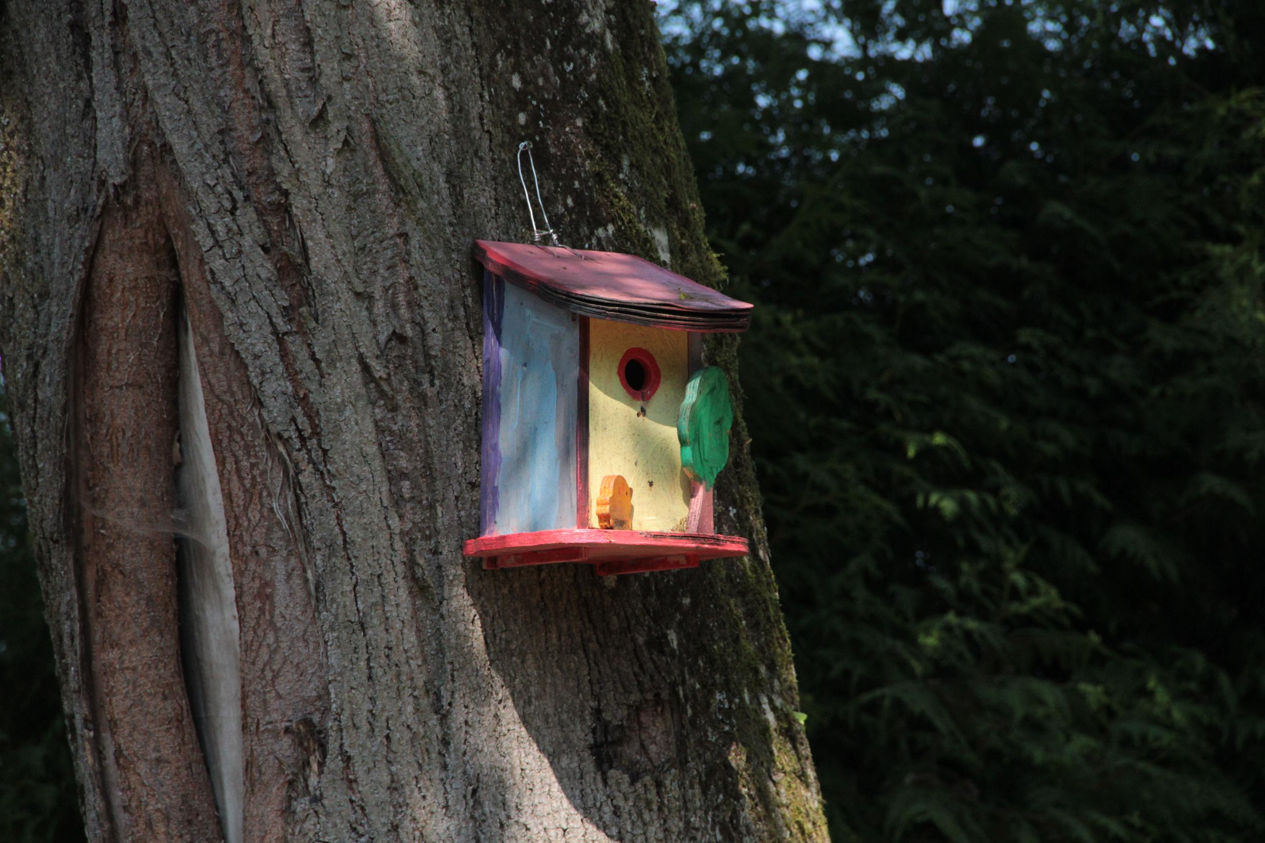 vogelhaus2